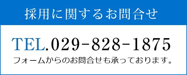 TEL:029-828-1875